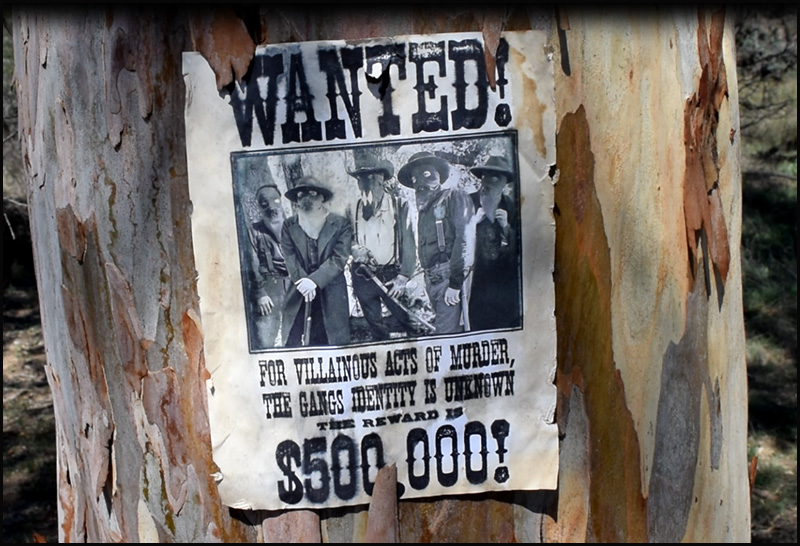 Wanted Poster screenshot.jpg